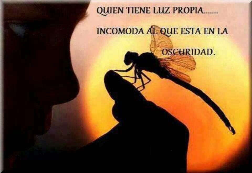 Brillar con luz propia   ¡¡Español por favors!!   Insects ...