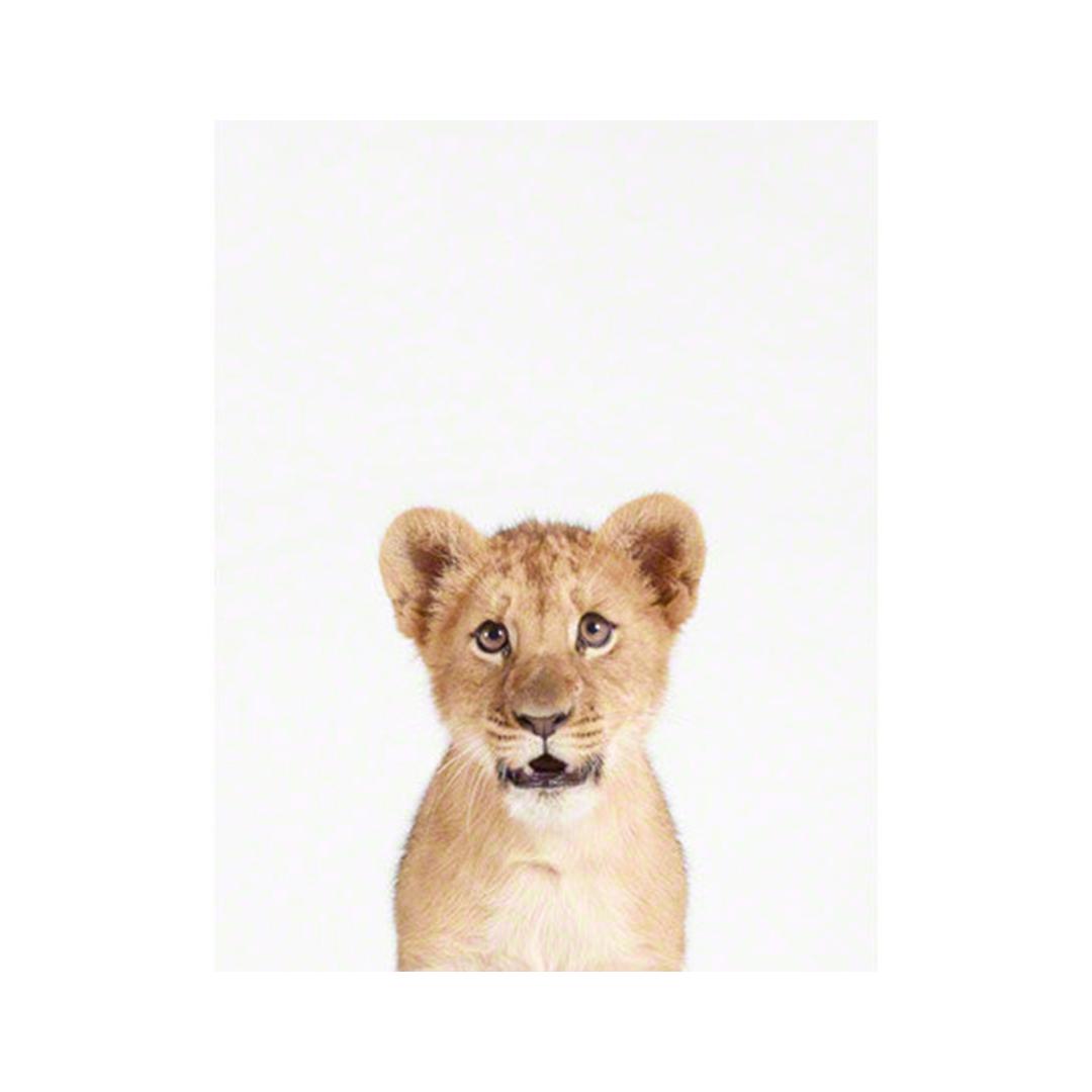 Lion Cub Little Darling Print