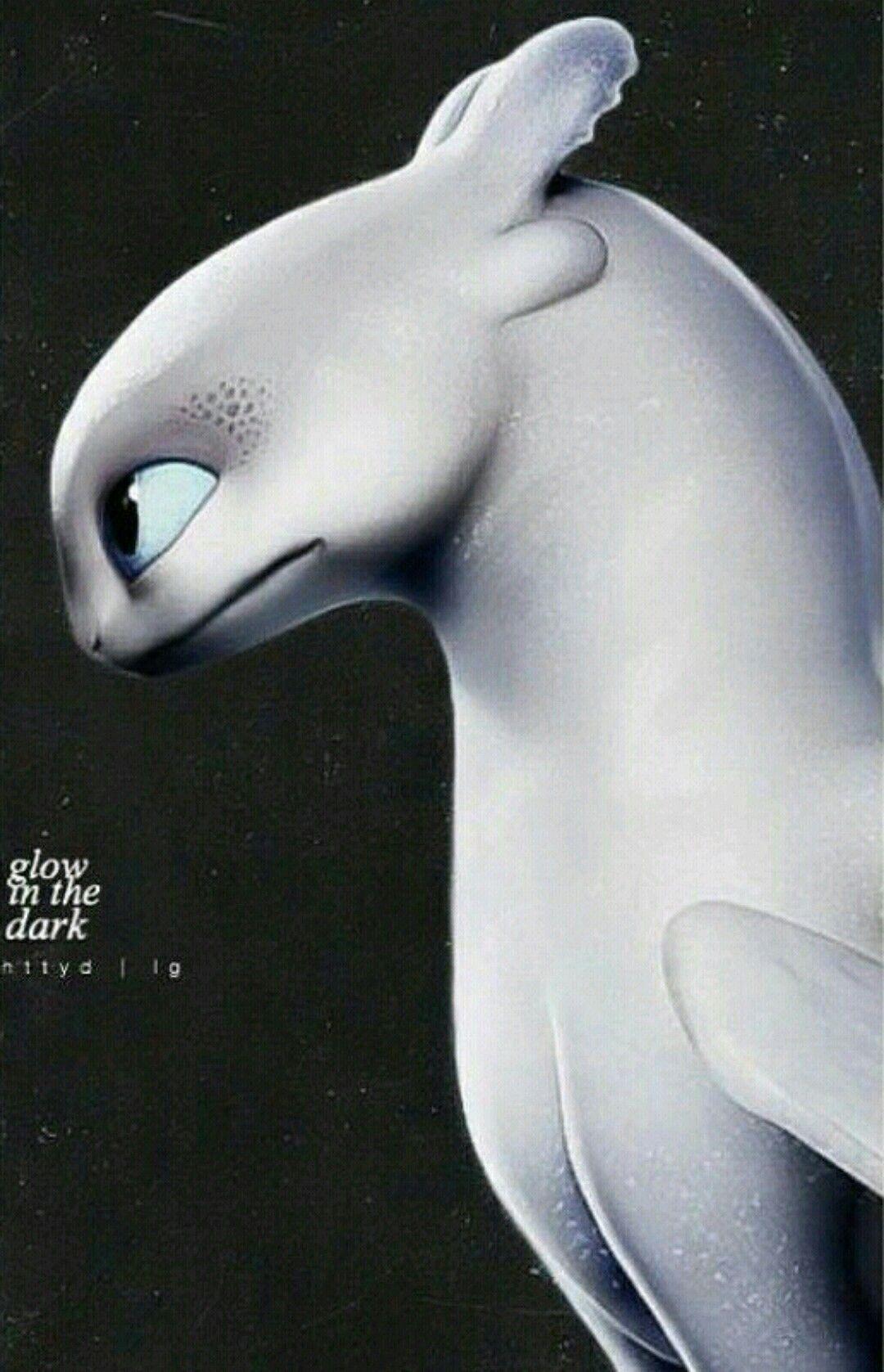Glow In The Dark Papeis De Parede Casal Papel De Parede De