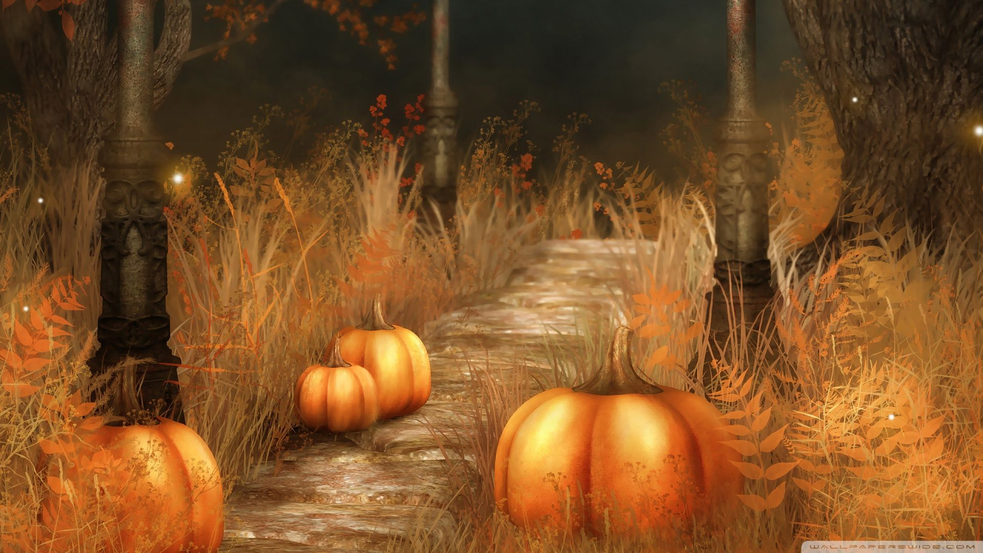 cute fall pumpkins wallpaper pumpkins halloween wallpaper free download