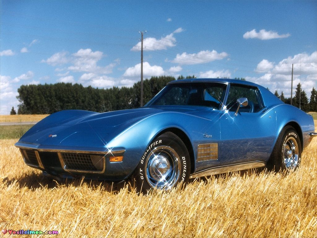 1973 corvette stingray w t tops one day in my garage pinterest cars dream cars and chevrolet