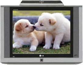 Lg 21 Inches Crt 21fd5wge Television Cute Animals Puppies Baby