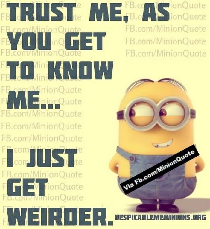 Attractive Wednesday Minions Funny Quotes (01:31:12 PM, Wednesday 11, November 2015  PST)   10 Pics   Minion Quotes