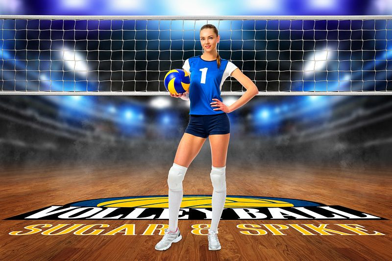 Player Banner Photo Template Horizontal Volleyball Court Logo Sport Poster Photo Template Photo Posters