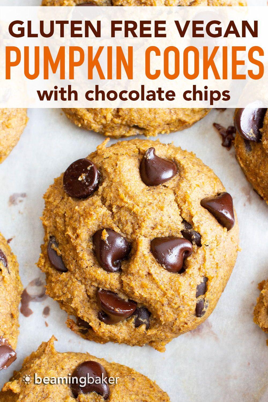 Soft N Fluffy Gluten Free Vegan Pumpkin Chocolate Chip