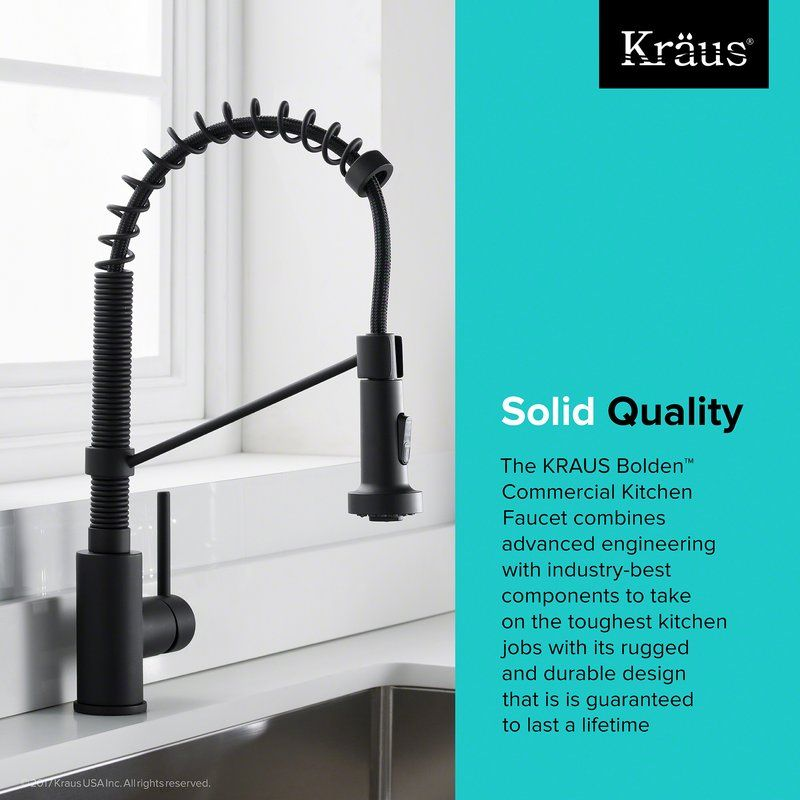 Bolden™ Series Single Handle Pull Out Kitchen Faucet | C U C I N A ...
