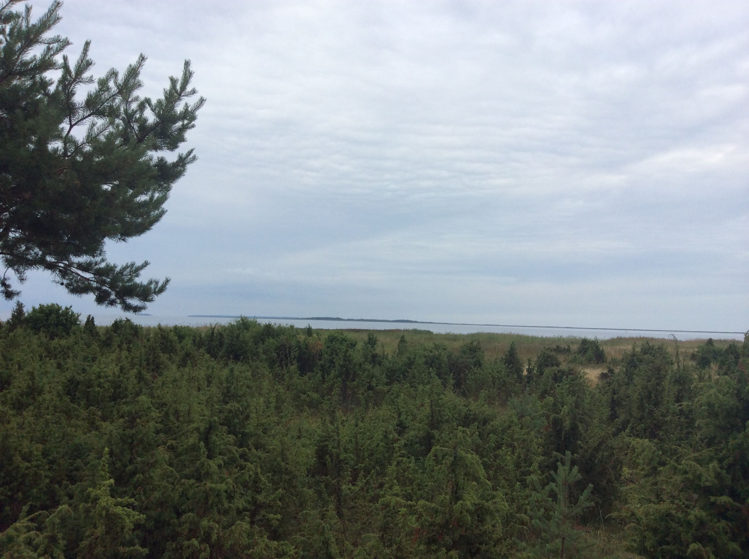 Estland Saarema