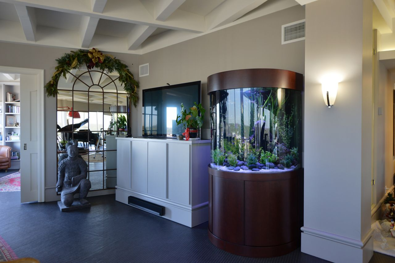Freshwater aquarium fish houston - Private Residence Houston Tx Custom Freshwater Bullnose Aquarium By Fish Gallery