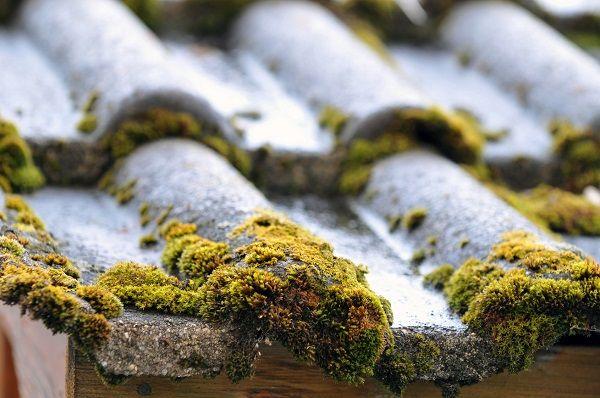 Dossier Rénover la toiture de votre maison #toit #toiture