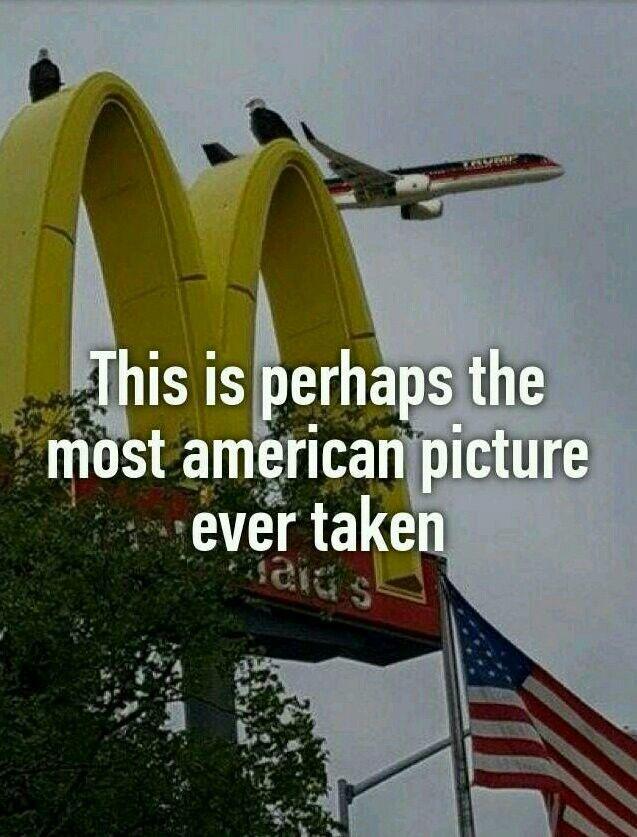 Die besten 25 most american picture ideen auf pinterest lustige geschichten auf englisch - Awesome englisch ...