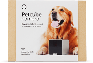 Stay Connected To Your Pets When You Are Not At Home Petcube
