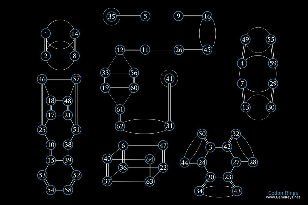 Codon-Rings-Map-2-(Fix-Life-and-Death)