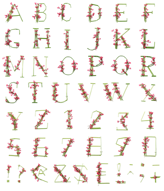 Stem and flower preview fancy fonts pinterest fonts stem and flower font mightylinksfo Gallery