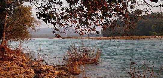 Il turbinoso deflusso invernale delle acque del Piave