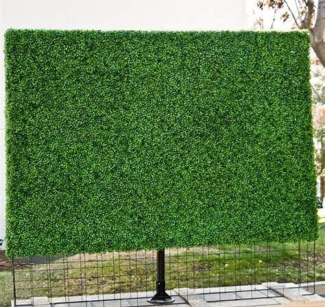 The Cheapest Way to Build a Privacy Screen Fence Ideas from Scratch #balconyprivacy