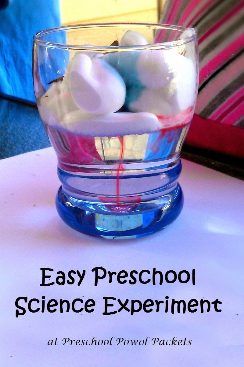 At home science projects for toddlers
