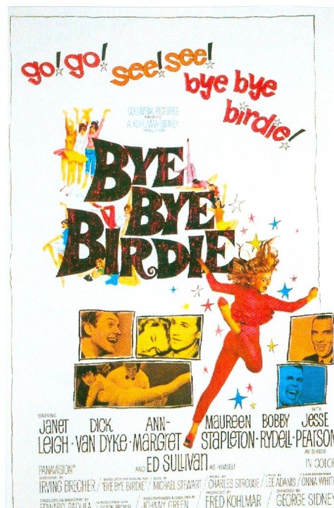 Magnet- Bye Bye Birdie movie poster magnet | Movies | Bye