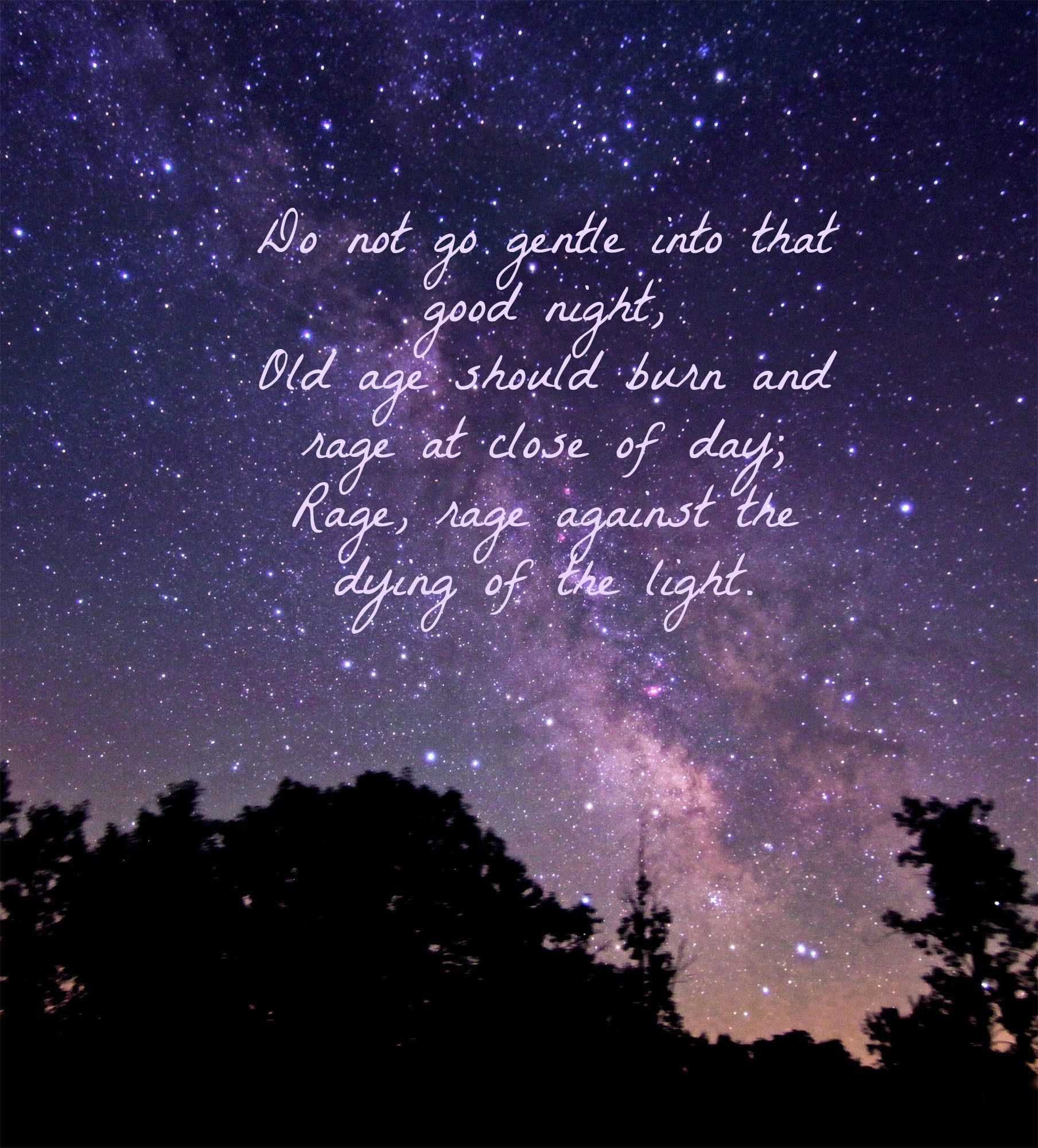 Do Not Go Gentle Into That Good Night Bravery Quotes