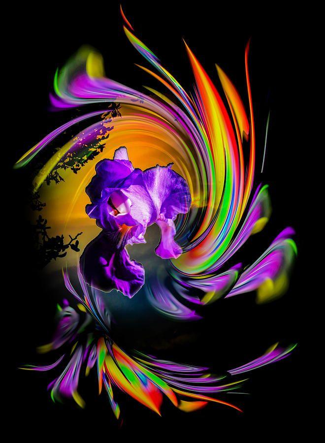 Flowermagic   by Walter Zettl