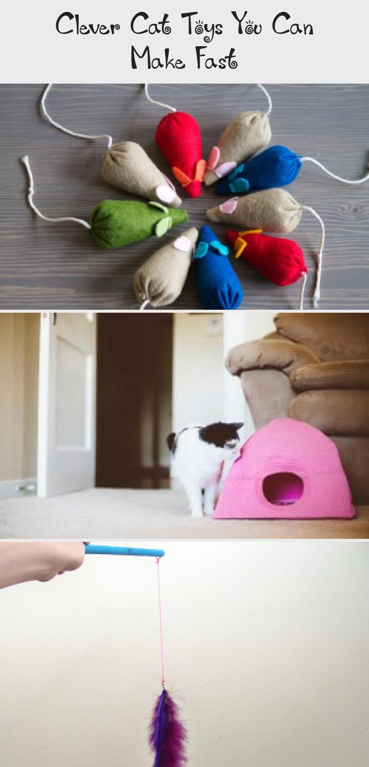 Clever cat toys you can make fast cat toys diy cat toys