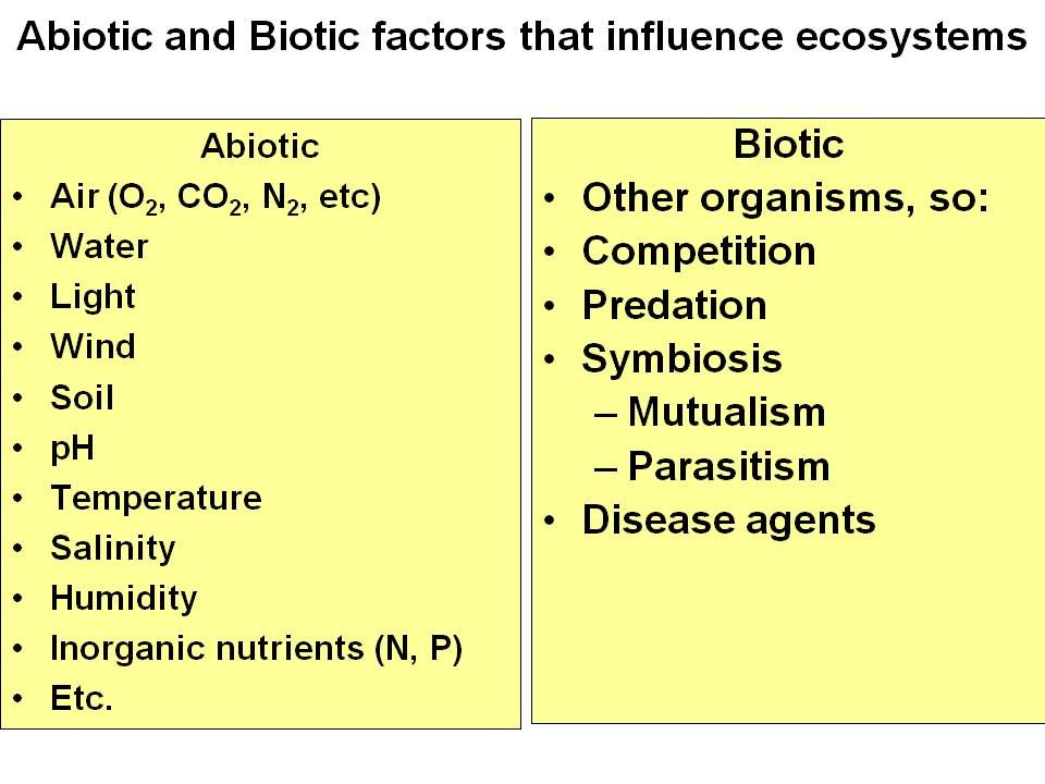 biotic and abiotic factors worksheet Google Search – Abiotic and Biotic Factors Worksheet