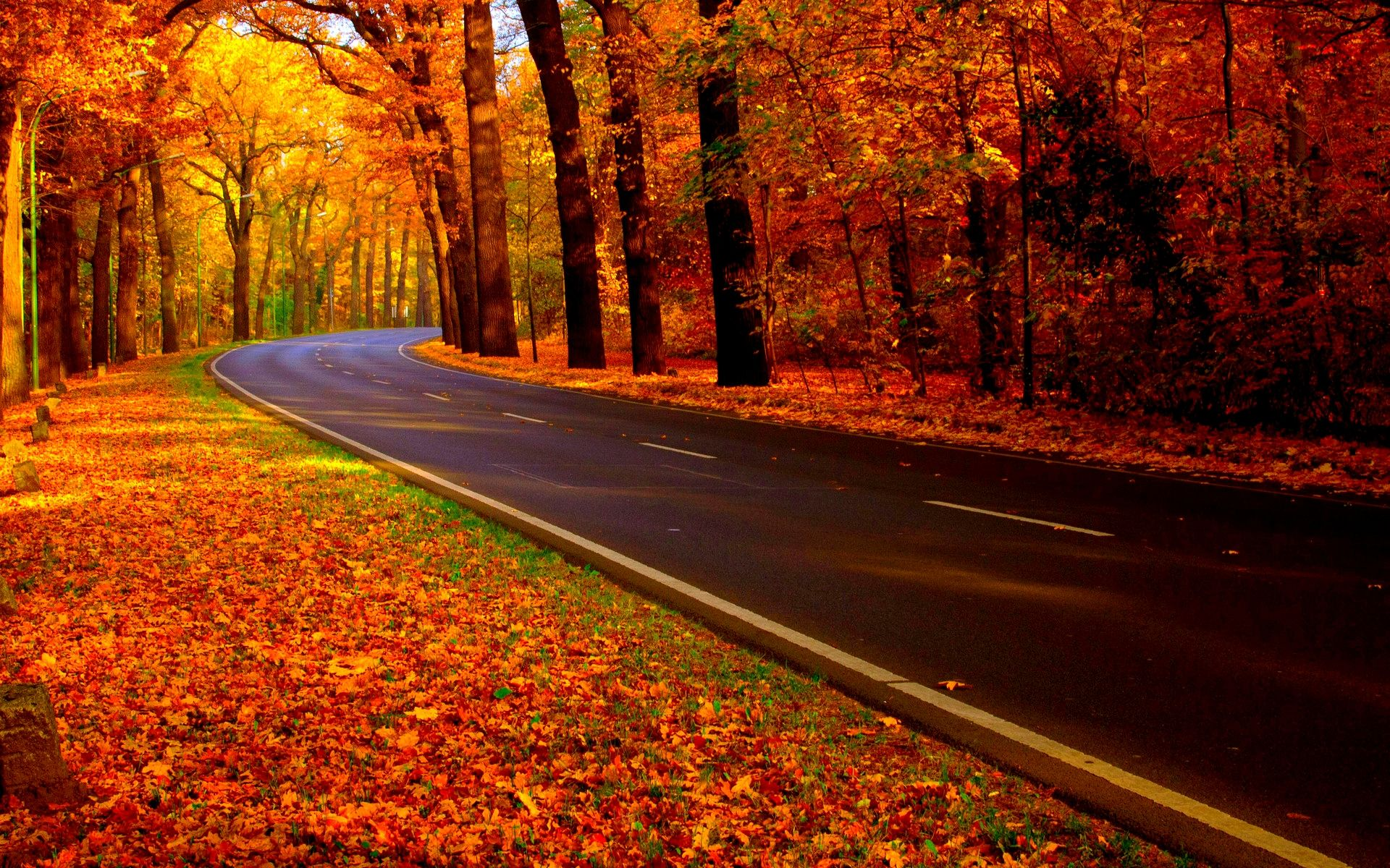 Autumn Road Uploaded To CureZone By Folliculitis On