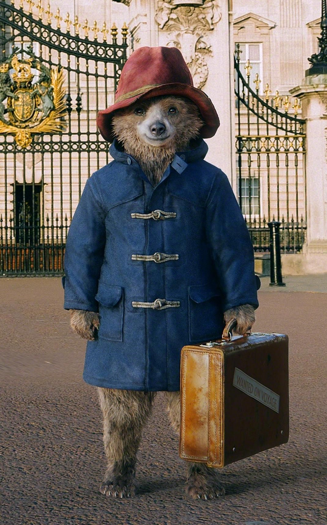 paddington bear film # 36