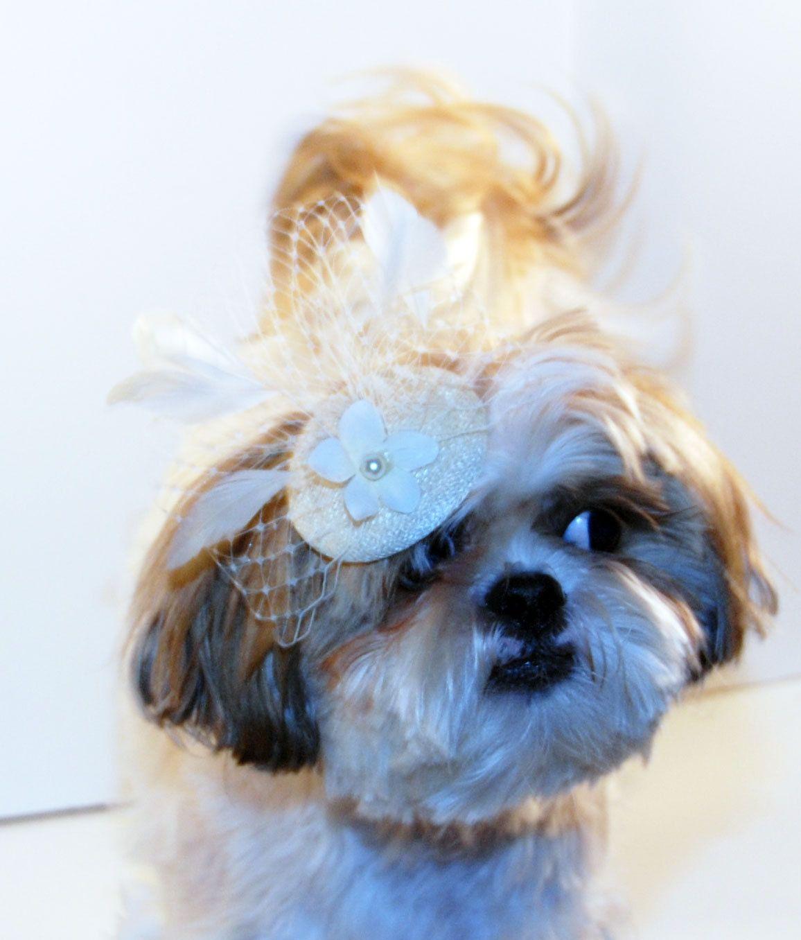 Ivory Fascinator Hat For Dogs Dog Wedding Hat Dog Bridal Hat