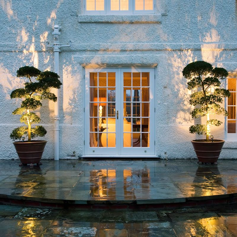 Outdoor Up Lighting For Trees Pin by tiffany parisi on vertical garden pinterest gardens spot jardin spiked garden light uplighting through two plants workwithnaturefo