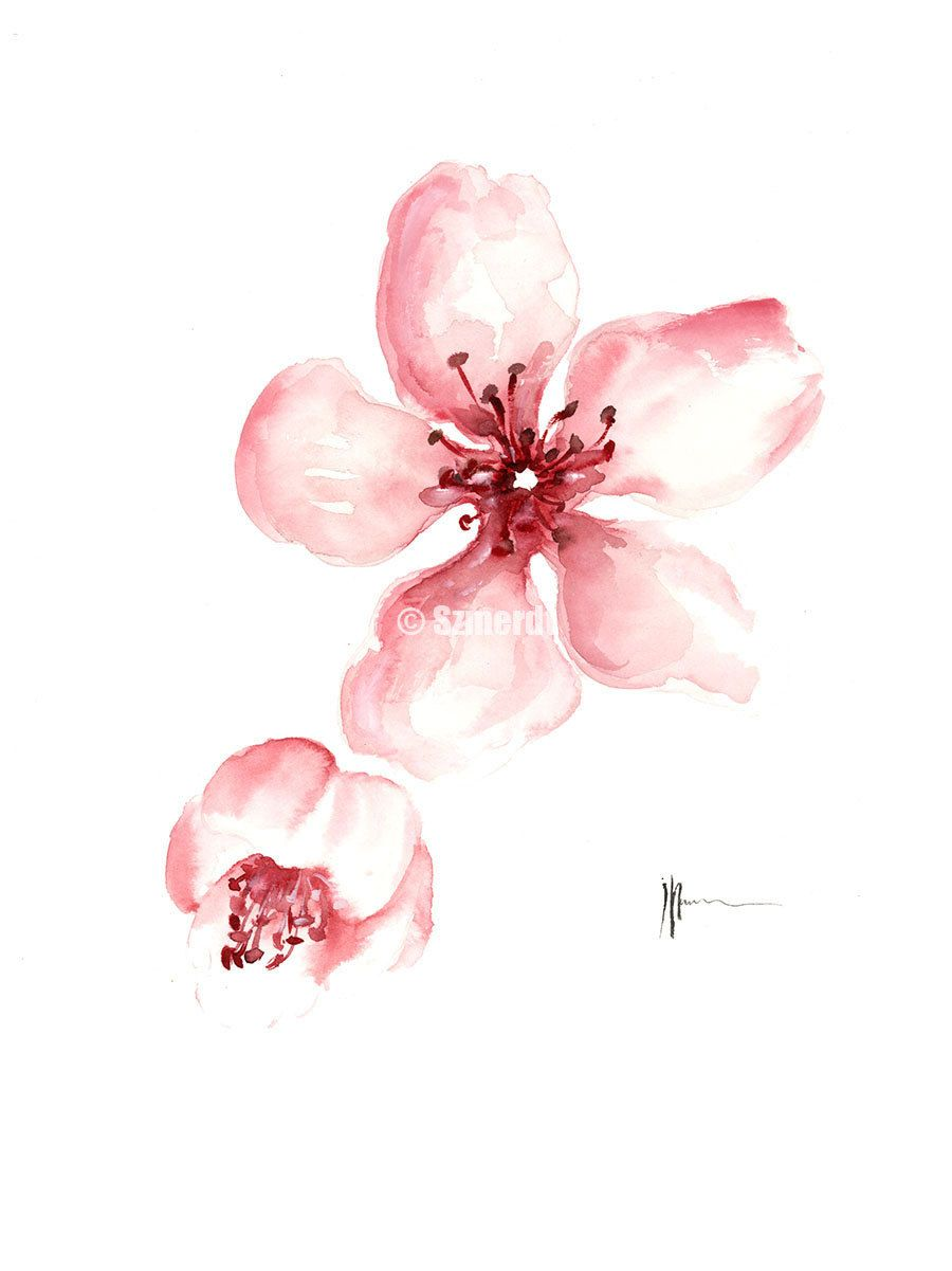 Cherry Blossom Flower Art Print Pink Floral Home Decor Painting