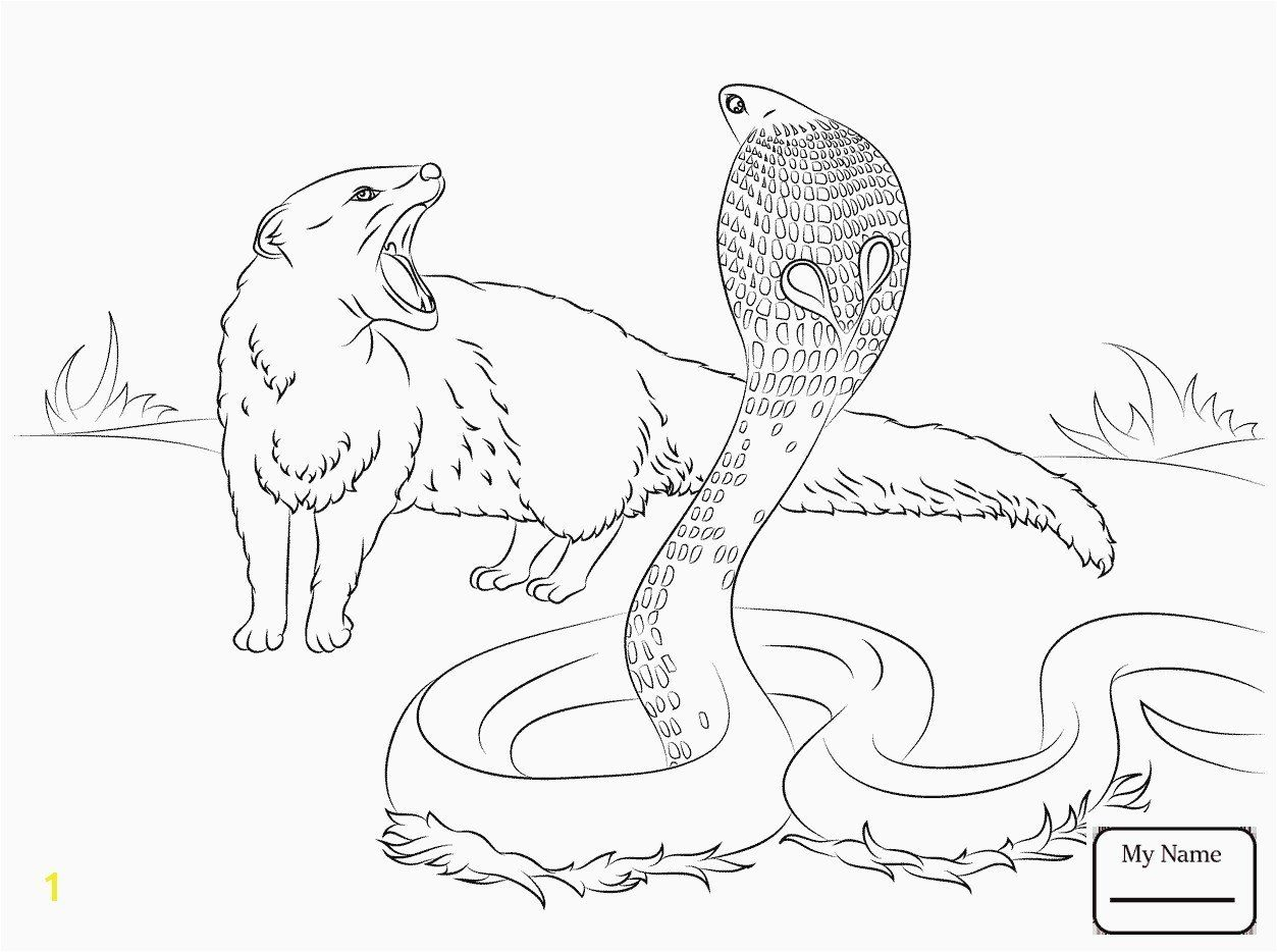 Coloring Pictures Of Animals Awesome Elegant Cute Baby Sea