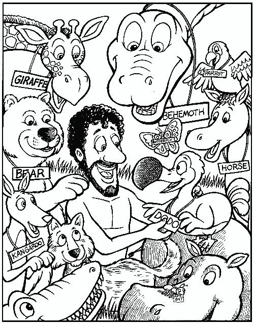 Naming All The Animals Animal Coloring Pages Bible Coloring Pages Creation Coloring Pages