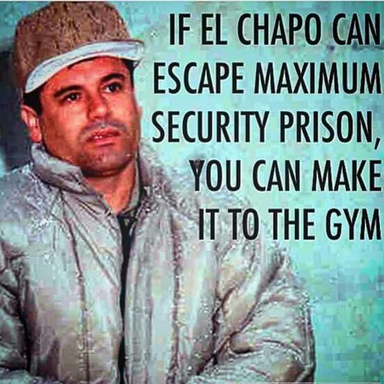 Chapo Guzman Frases Chistes Y Frases