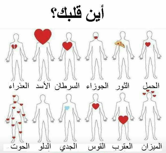كلبي براسي شودا اهناك Funny Arabic Quotes Funny Words Beautiful Arabic Words