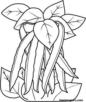 Printable Vegetable Peas Coloring Page Printable Coloring Pages