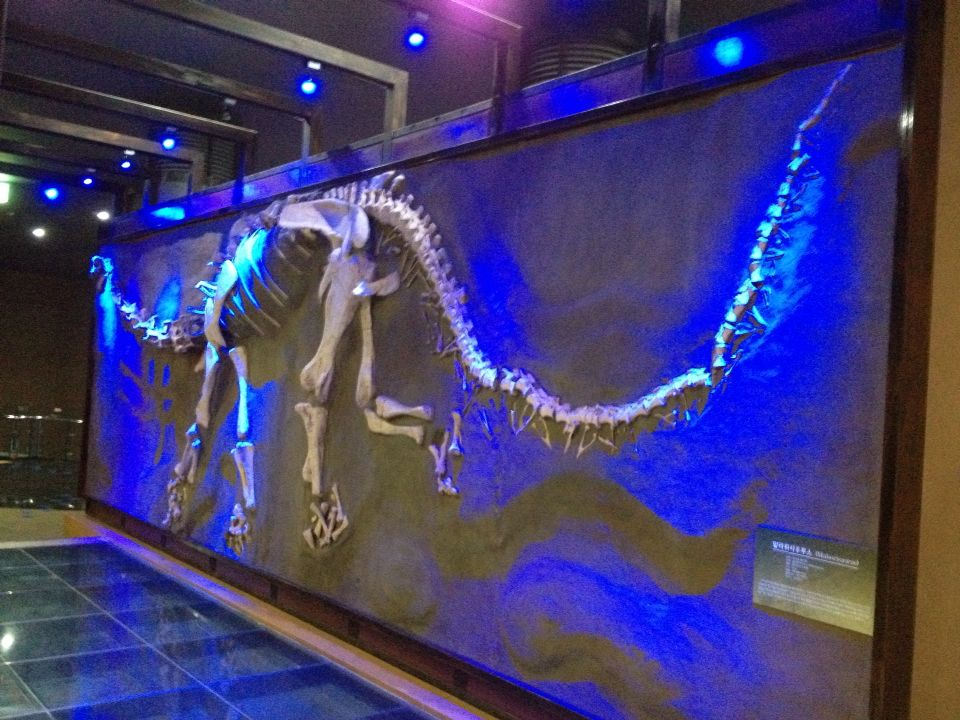 우항리 공룡박물관