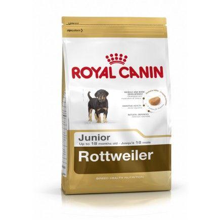 Royal Canin Rottweiler Junior Dog Food 12kg Royal Canin Dog Food French Bulldog Adult Dog Food Recipes