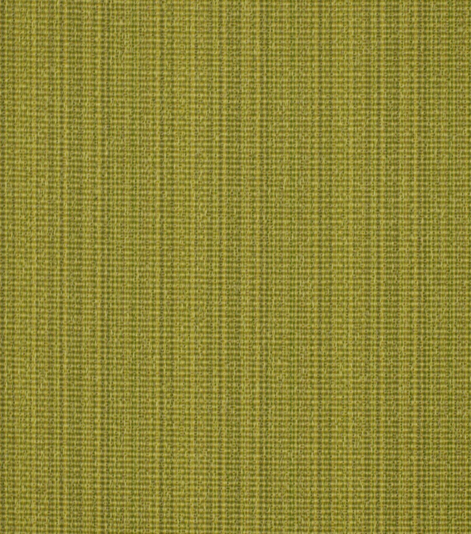 Robert Allen @ Home Upholstery Fabric-Run Along Kiwi