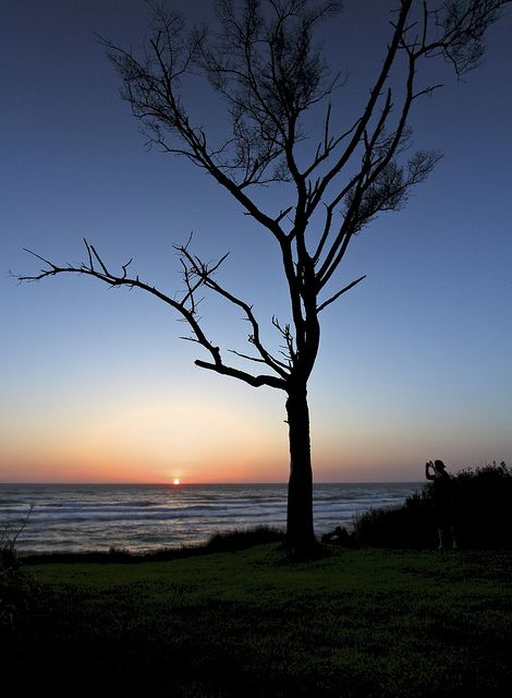 sunset at the cove by imagebyTerri, via Flickr