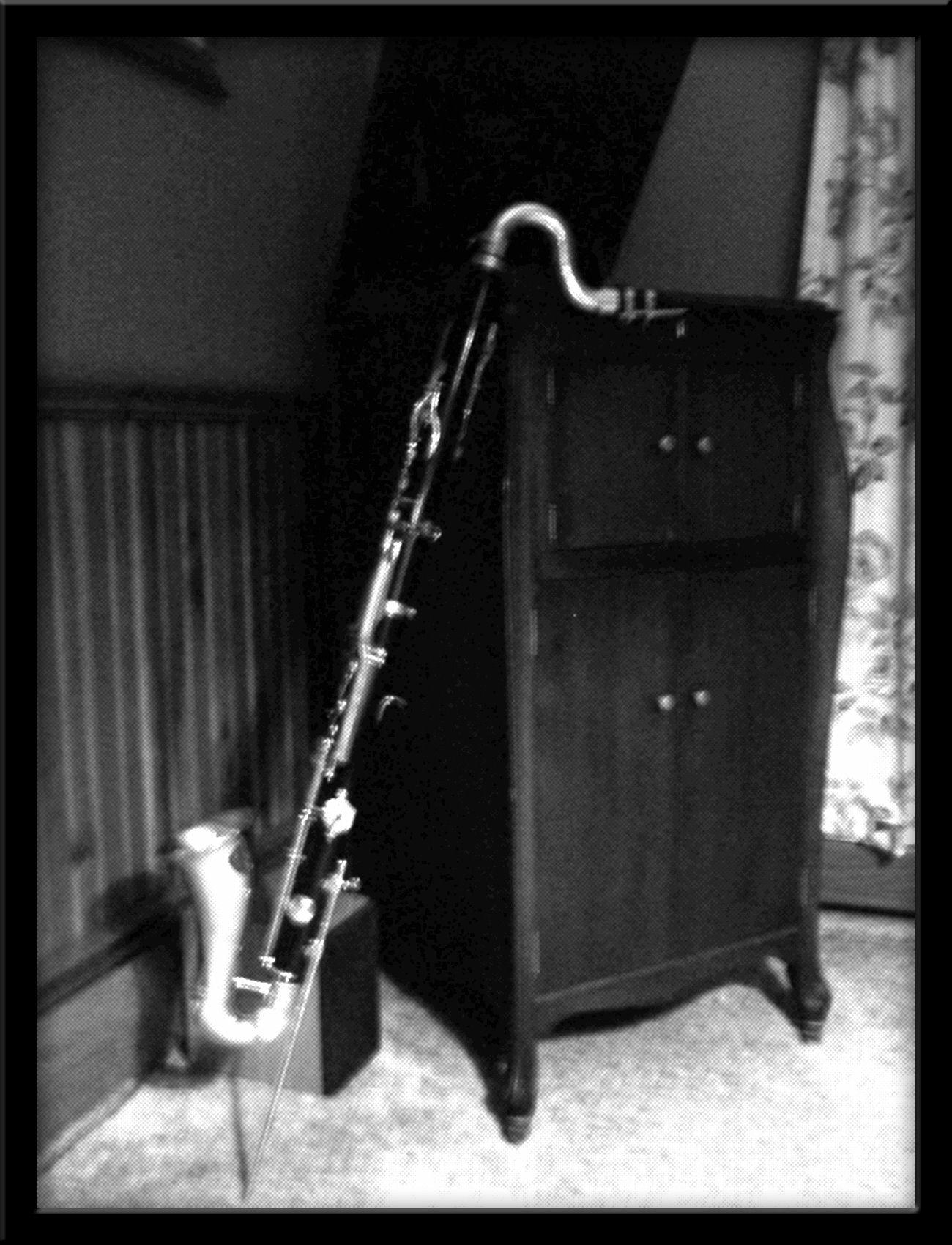 Bass Clarinet Embgroup Facebook EnriqueMaldonadoJr
