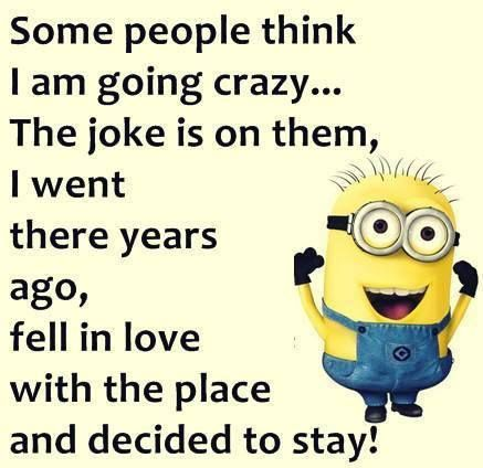 Some People Think I Am Going Crazy Funny Minion Memes Funny Quotes Minions Funny