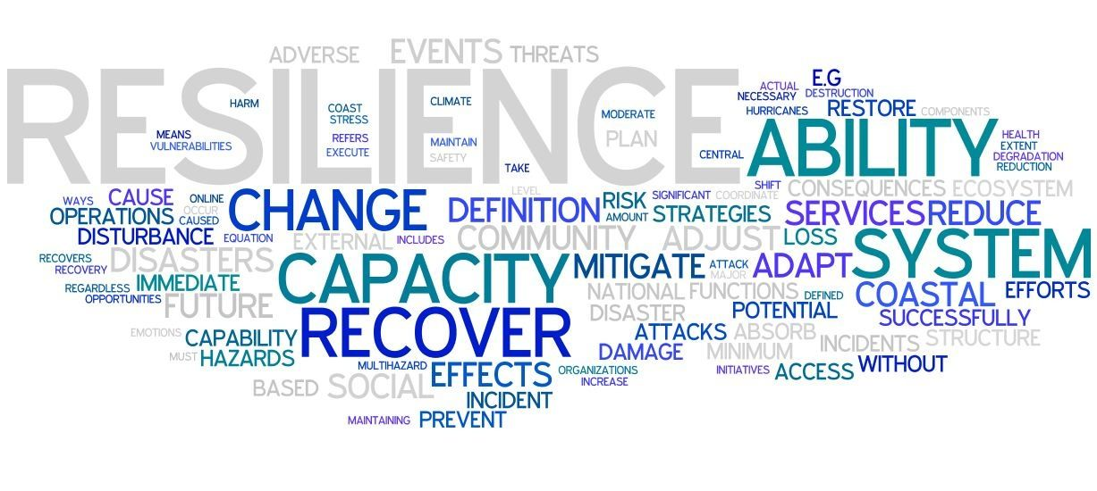 Planning For Climate Change Resilience How To Plan Define Resilience