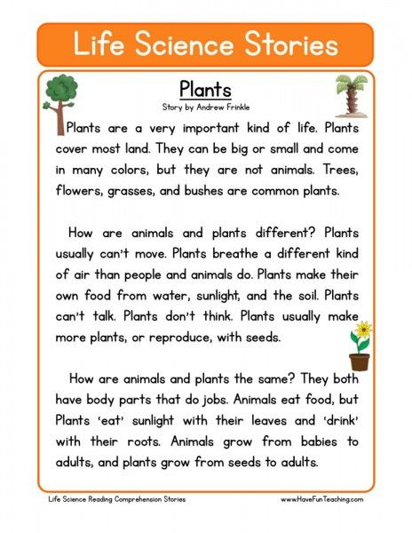Reading Comprehension Worksheet Plants School Plants