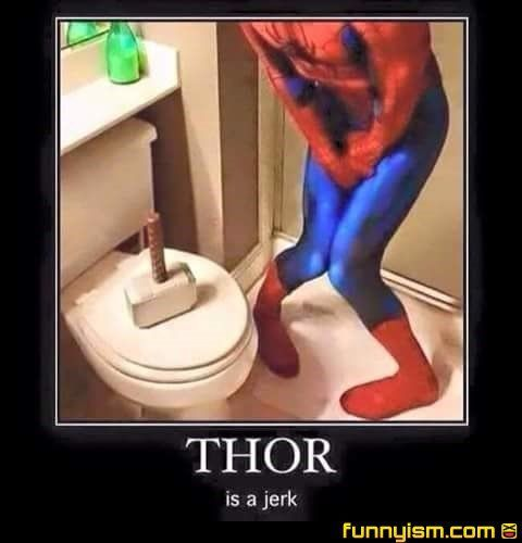 seriously thor | Funny Pics | Funnyism Funny Pictures