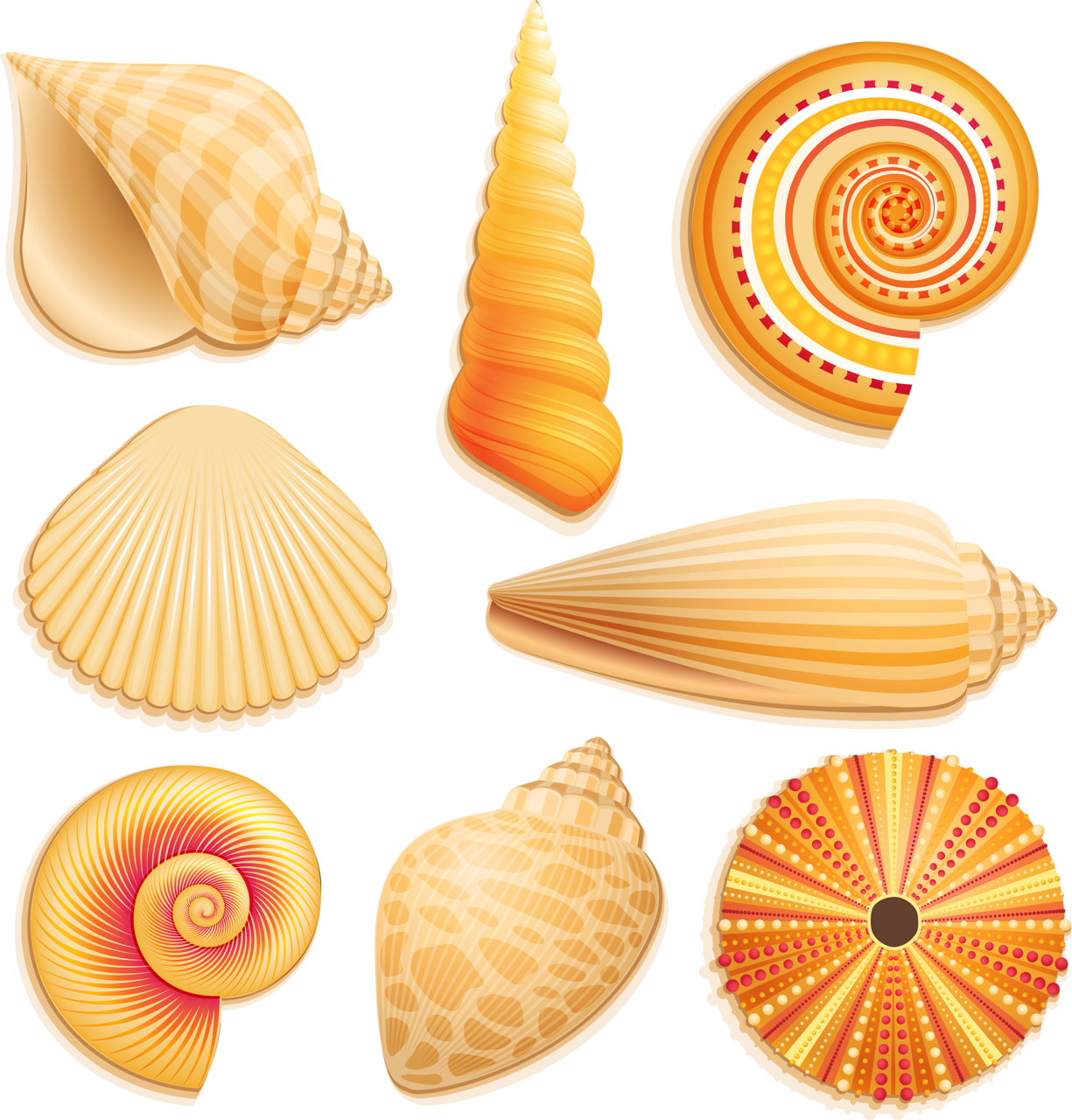 Яндекс.Фотки | Clipart fish and sea | Pinterest | Beach ...