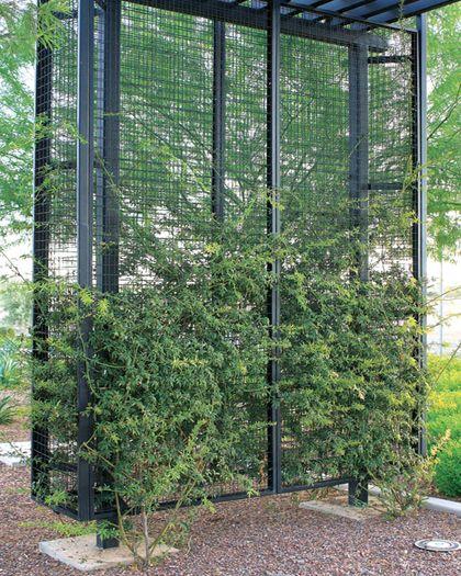Mcnichols Eco Mesh Modular Facade And Trellis System Climbing Plants Trellis Garden Vines Screen Plants