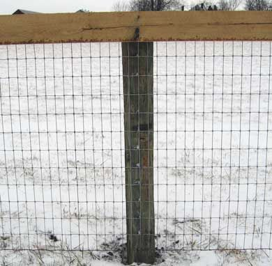 Red top brand and Bekaert dealer of wire fence, woven wire, hi ...