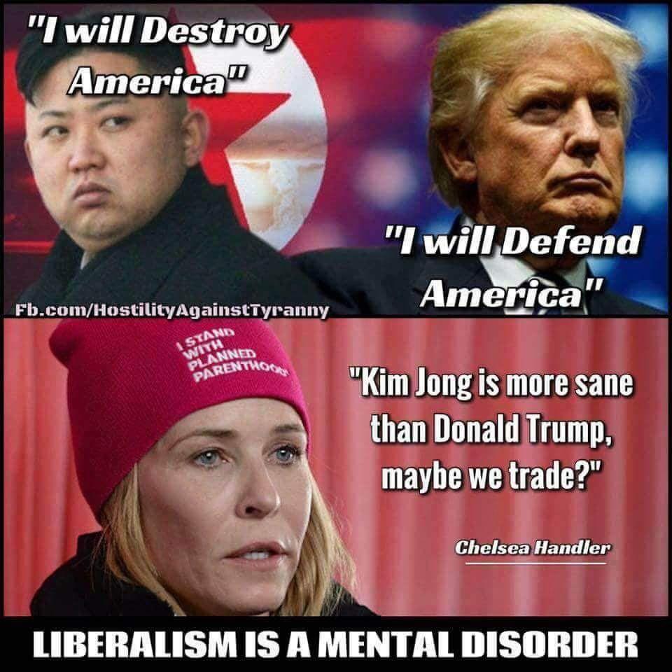 Liberal Memes