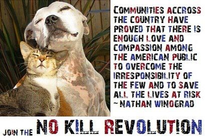 There is enough love and compassion .  .  . to save all the lives at risk.