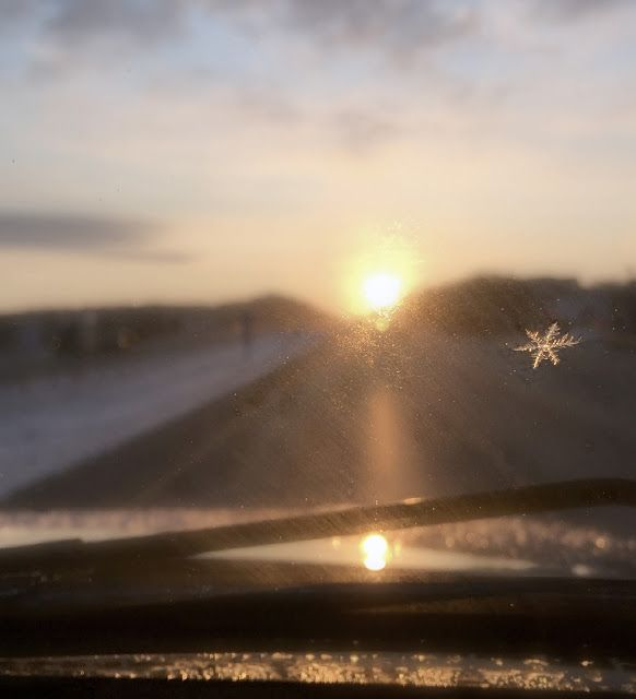 March 4, 2016 (064/366) It has been said that the biggest cliché in photography is sunrise and sunset, but this one offers a slightly new perspective.  I was drawn to the lone snowflake that came along for the ride. (I-94 East of Delafield, 6:30 am).  [Disclaimer: I wasn't driving when I took this photo!] C'est ma vie!: Sunrise through a frosty windshield